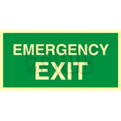Znak emergency exit AC 002